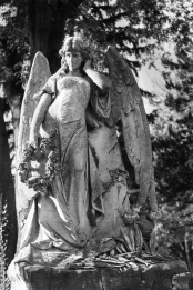 Angel Saints and Death-7