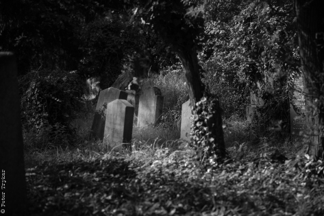 jewesh cemetery 3