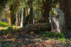 jewesh cemetery 4