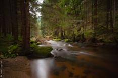 magic river 1