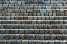 steps with some green