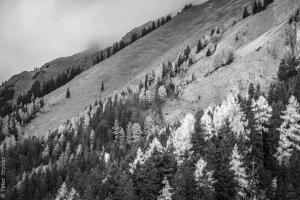 landscape arround Mariazell 1