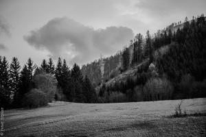 landscape arround Mariazell 2
