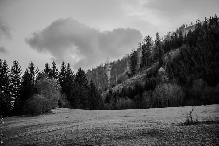 Landschaft Mariazellerland-3