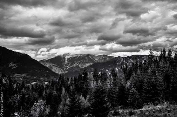 landscape arround Mariazell 4