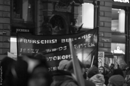 NoWKR_Demonstration_2015-63