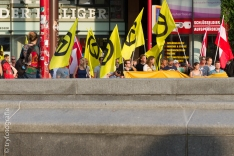 about 120 people demonstrated against terror, green and socialist politic in Austria