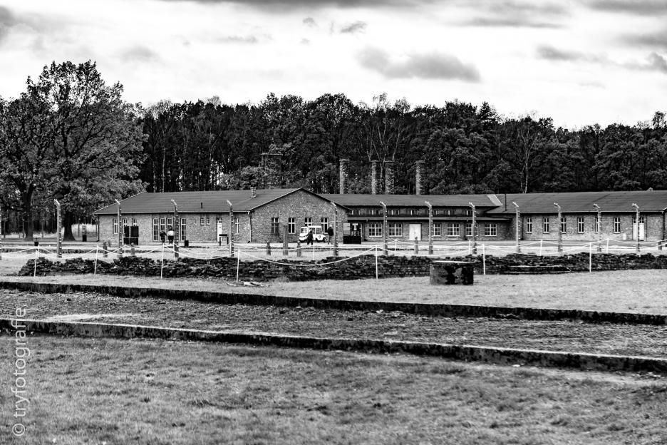 auschwitz-birkenau-33