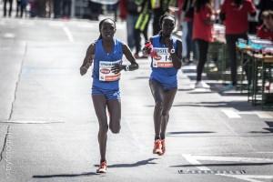 Vienna Marathon 201-66