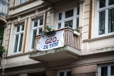 HH-G20-Demonstration-08Juli2017-97