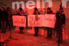 One Billion Rising Vienna-37