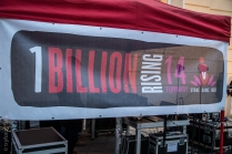 One Billion Rising Vienna-7